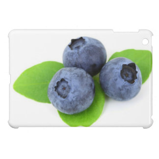 Blackberries iPad Mini Covers