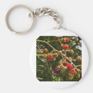 Blackberries Keychains
