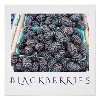 Blackberries Kitchen Art Poster for Home Decor