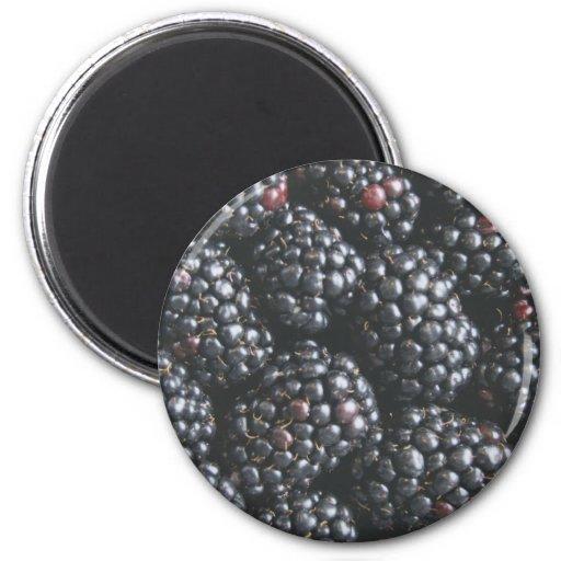 Blackberries Fridge Magnets