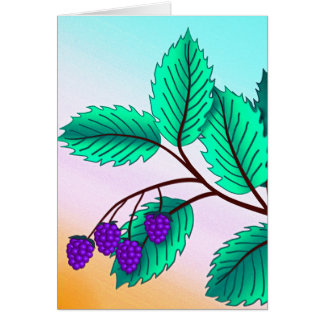 Blackberries on a branch card