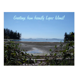 Blackberries on Lopez Postcard