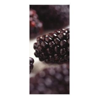 Blackberries Custom Rack Card