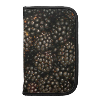 Blackberries Smart Phone/Kindle Folio Planner