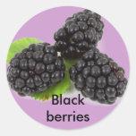 Blackberries stickers round sticker