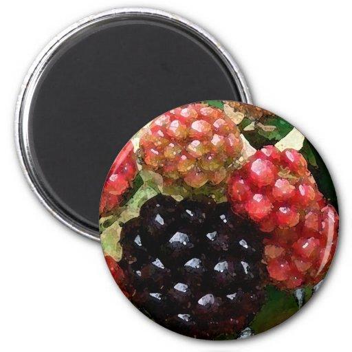 Blackberries Watercolor - Magnet