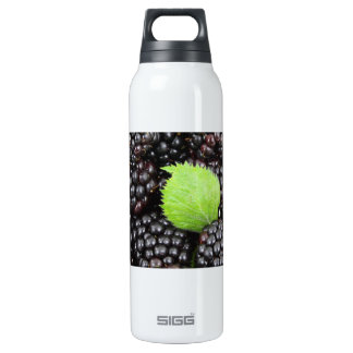 BlackBerry Background SIGG Thermo 0.5L Insulated Bottle