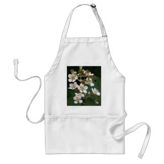 Blackberry blossoms in flower adult apron