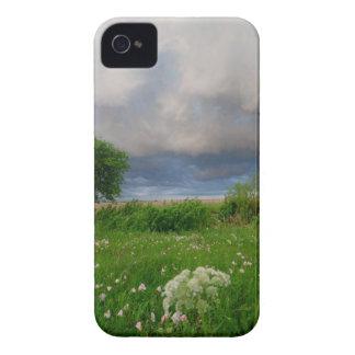 Blackberry Bold Case Stormy Skies