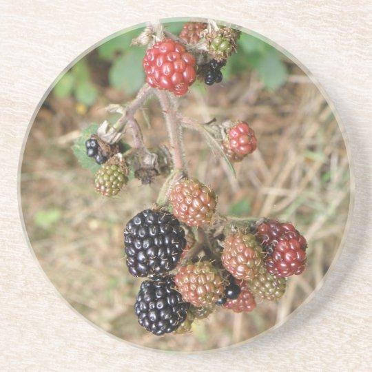 Blackberry Bonanza Coasters