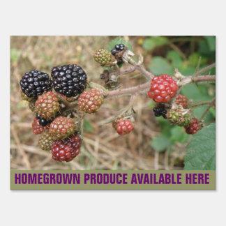 Blackberry Bonanza Fresh Produce Custom Sign