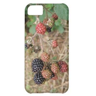Blackberry Bonanza iPhone 5 Case