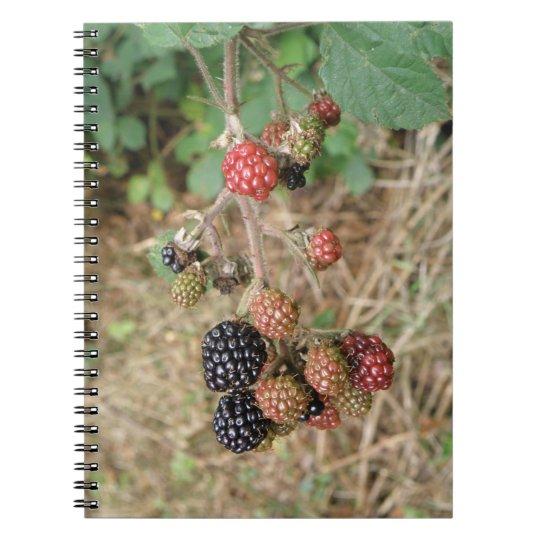 Blackberry Bonanza Notebook