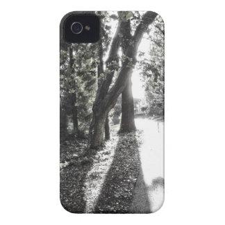 Blackberry Case - Serene Woods
