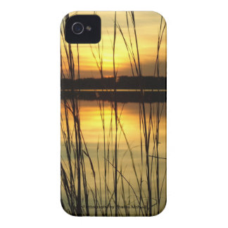 Blackberry Cases Sunset Lake View 15