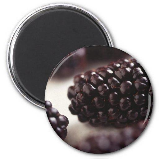 Blackberry Closeup Magnet