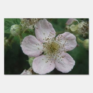 Blackberry Flower Macro Decorative Yard Sign