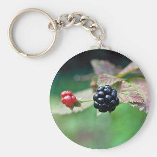 Blackberry Key Chains
