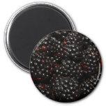 Blackberry Magnet