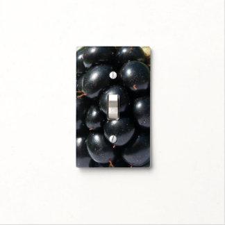 Blackberry Cubierta Para Interruptor