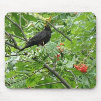 Blackbird and Berries Mousepad