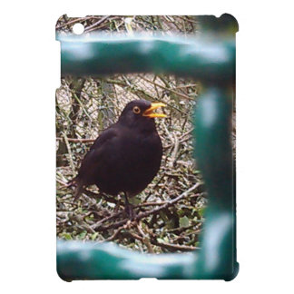 Blackbird behind bars, Animal, Birds, Black Bird Cover For The iPad Mini