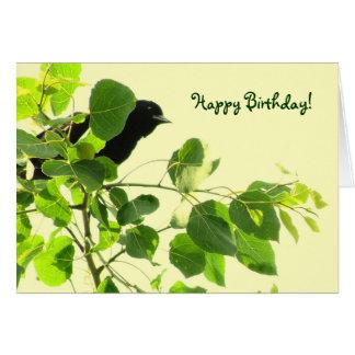 Blackbird Birthday Greeting Card