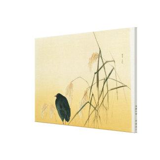 Blackbird, Edo Period Canvas Print