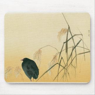 Blackbird, Edo Period Mouse Pad