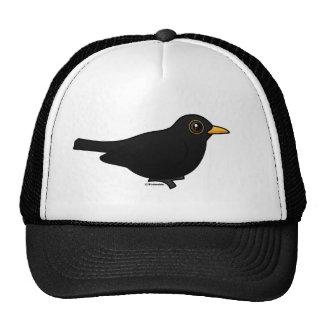 Blackbird Mesh Hats