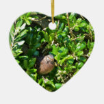 Blackbird in a laurel bush christmas ornament