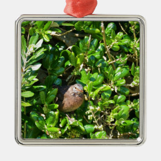 Blackbird in a laurel bush metal ornament