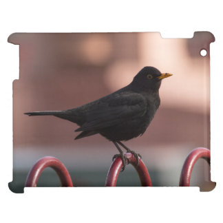 Blackbird iPad Cases