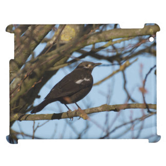 Blackbird iPad Covers
