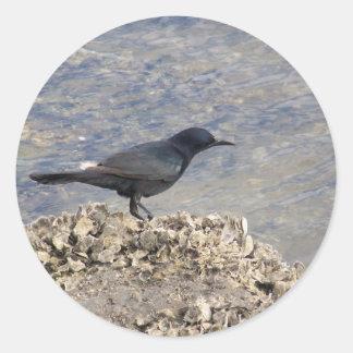 Blackbird on the Bay Classic Round Sticker