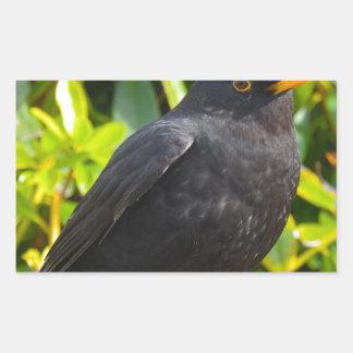 Blackbird Rectangular Sticker