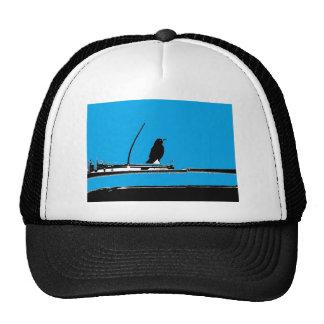 Blackbird with Antenna on Turquoise Trucker Hat