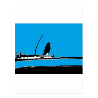 Blackbird with Antenna on Turquoise Postcard