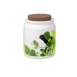 Blackbirds Candy Jars