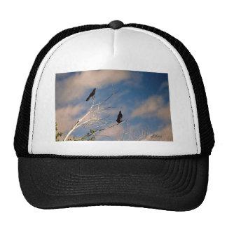 Blackbirds Hats