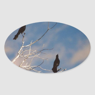 Blackbirds Oval Sticker