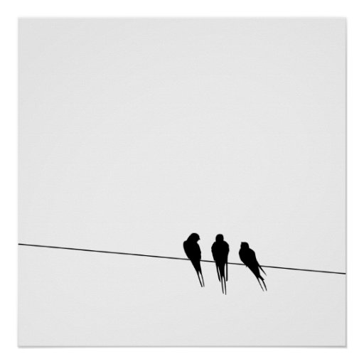 Blackbirds Silhouette on Wire Poster