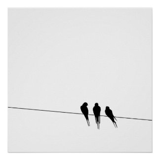 Blackbirds Silhouette on Wire Posters