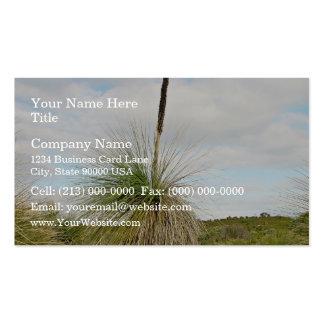 Blackboy tree with dried flower spike business card template