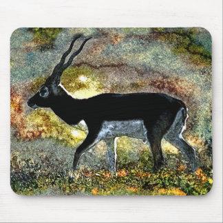 Blackbuck Antelope from Junglewalk.com Mouse Pad