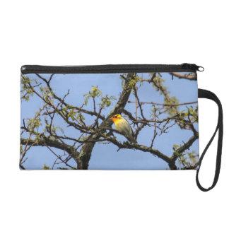 Blackburnian Warbler Wristlet