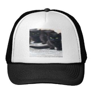 BLACKCATS TRUCKER HAT