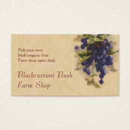 Blackcurrant fruit sales business card