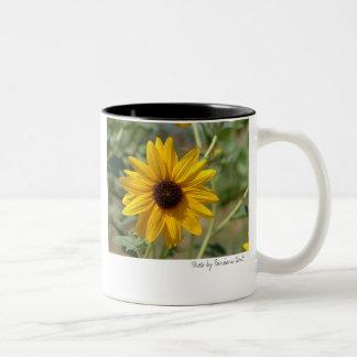 blackeyed_susan, blackeyed_susan, Photo by Barb... Two-Tone Coffee Mug