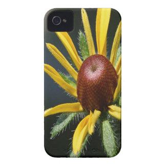 Blackeyed Susan iPhone 4 Case